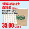 Fresh Extra Large White Eggs In Case