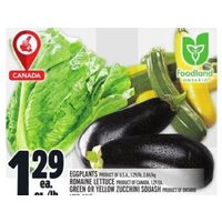 Eggplant, Romaine Lettuce, Green Or Yellow Zucchini Squash