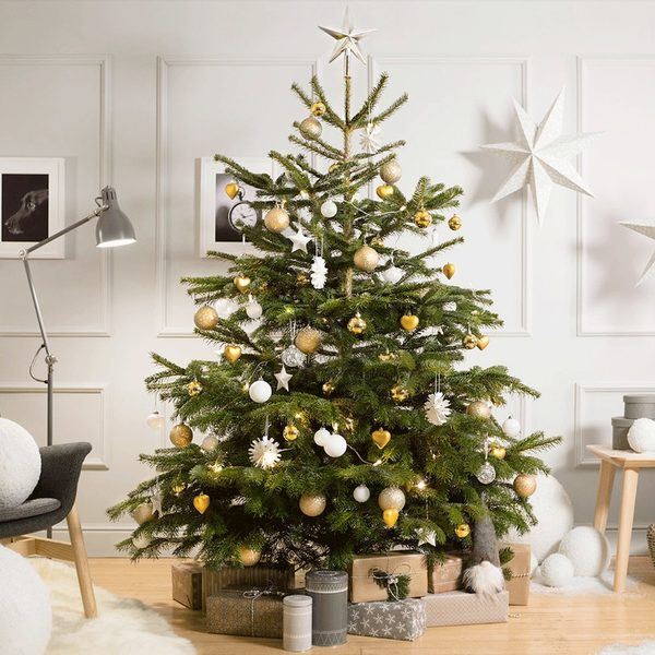 IKEA: Get a FREE $25.00 Coupon When You Buy a Christmas Tree for $25.00 -  RedFlagDeals.com - IKEA: Get A FREE $25.00 Coupon When You Buy A Christmas Tree For