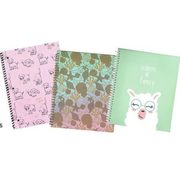 Fashion Notebooks - From $4.79 (20% off)